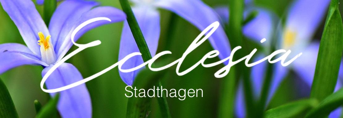 Ev. Freikirche Ecclesia -Stadthagen